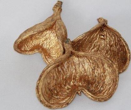 Badam zlatý