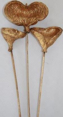 Badam zlatý os