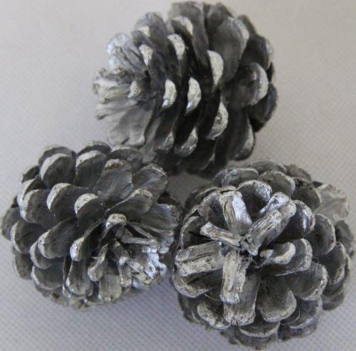 Blue pine silver