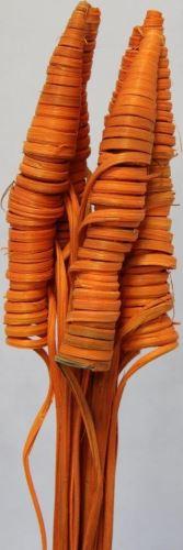 Cane cone oranžová