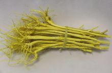 1039 sv.žlutá