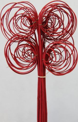 Cane coil červená